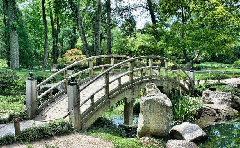 Piękny oraz schludny ogród to zasługa wielu godzin spędzonych  w jego zaciszu w toku pielegnacji.